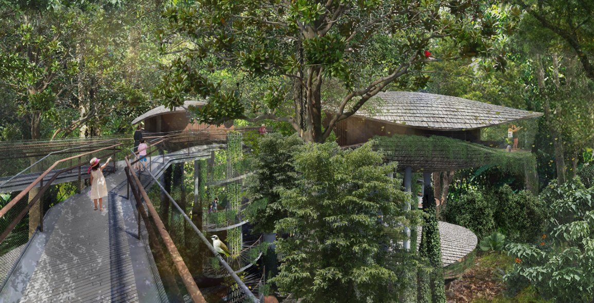 Architectural illustration of an elevated walkway at the resort. Image courtesy of Mandai Park Holdings.